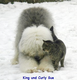 King und Curly Sue