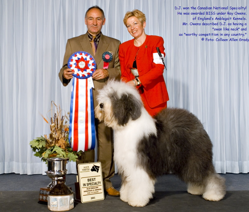 D.J. won the Canadian National Specialty!  